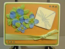 Flower dragonfly challenge