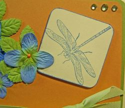 Flower dragonfly challenge close up