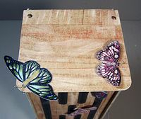 Butterfly house top