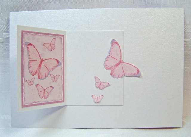 White gold butterfly book card open
