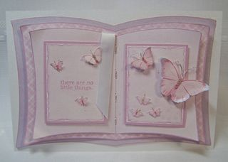 White gold butterfly book