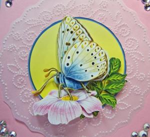 Butterfly tole CU