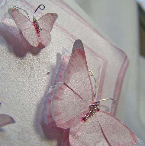 White gold butterfly book right butterflies CU tilted