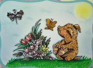 Dis spring bear CU